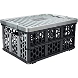 Jubatus 2 x Storage Box Organizer with Lid,Cooler Bag and Waterproof Bag Car Trunk Organizer Gray Collapsible Organizer for Cars, Garage, Home or Garden