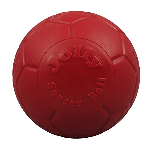 - Jolly Pets Jolly Soccer Ball Dog Toy 8in