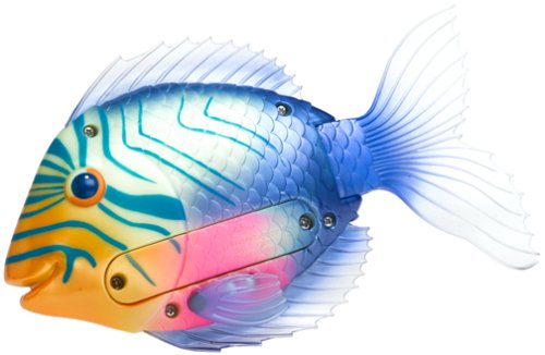 Swimways Rainbow Reef - Swimways Rainbow Reef Magic-Action Mini Trigger Fish