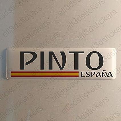 Pegatina Pinto España Resina, Pegatina Relieve 3D Bandera Pinto ...