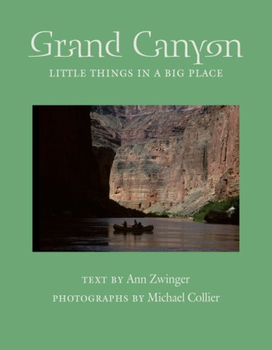 Grand Canyon: Little Things in a Big Place (Desert Places) pdf epub