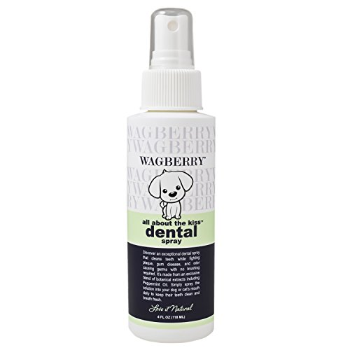 Wagberry All About The Kiss Dental Spray by Wagberry