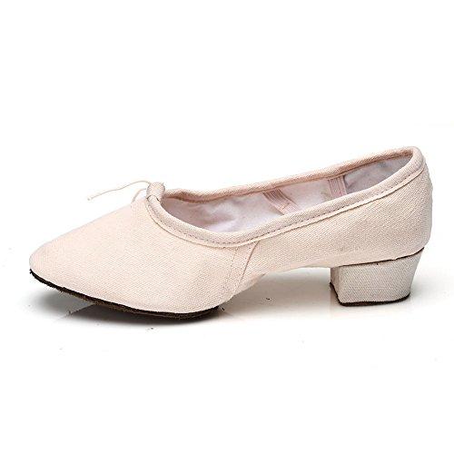 HROYL Zapatos de baile/Zapatos latinos de satín mujeres ES7-F17 el rosa