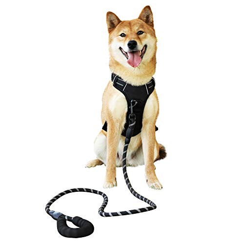 Raining Pet Medium Dog Harness Dog Leash Set,Dog Halter Comfortable Dog Padded Harness (Dog Collar Harness Leash Set)