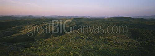 High angle view of hills, Aravalli Mountain Range, India Gallery-Wrapped Canvas