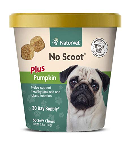 NaturVet - No Scoot for Dogs - Plus Pumpkin | Supports Healthy Anal Gland & Bowel Function | Enhanced with Beet Pulp, Flaxseed & Psyllium Husk (60 Soft Chews)