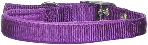 """Galaxy Padded Nylon Dog Collar by Kakadu Pet, Small, 1/2"""" x 16"""", Purple"""
