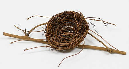 2'' Natural Robin Bird Nest with Twigs - Package of 6 Nests by Unknown