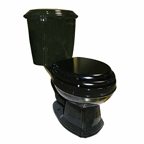Black Elegant Two-Piece Round Front Dual Flush Bathroom Toilet Grade A Vitreous China Gloss Easy Clean 31 3/4 In. H X 25 1/2 In. Proj. ()