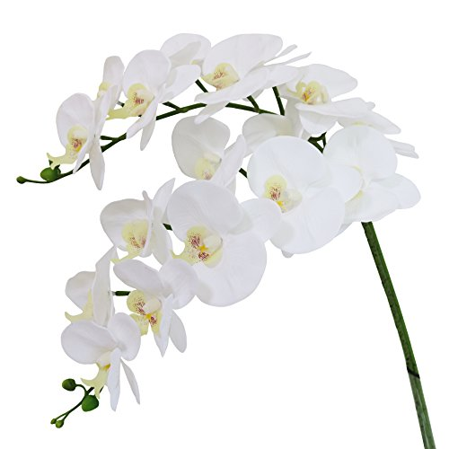 Htmeing 38 Inch Artificial Phalaenopsis Flowers Branches Real Touch (Not Silk) Orchids Flowers for Home Office Wedding Decoration,Pack of 2 (White)