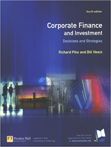 corporate finance investment decisions strategies