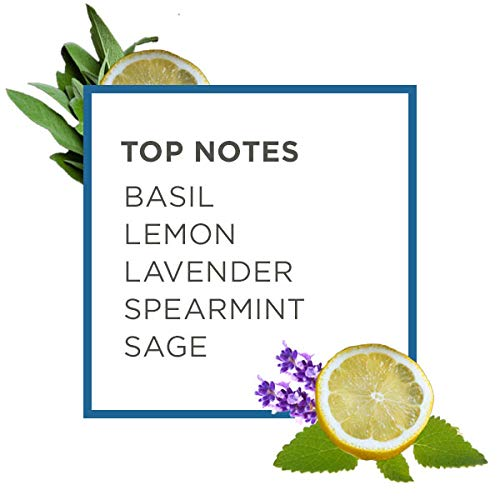 Caldrea Linen and Room Spray Air Freshener, Made with Essential Oils, Plant-Derived and Other Thoughtfully Chosen Ingredients, Basil Blue Sage Scent, 16 oz (Packaging May Vary)