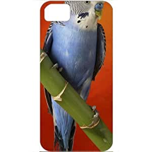 DIY Apple iPhone 5S Case Customized Gifts Personalized With Animals colorful budgerigar Animals Birds White