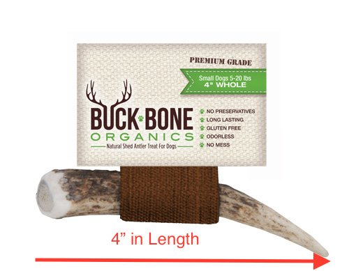 Elk-Antler-Dog-Chews-by-Buck-Bone-Organics-All-Natural-Healthy-Chew-For-Small-Dogs-From-Montana-USA-SMALL-SIZE