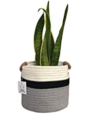 """ScarCO Woven Cotton Rope Plant Basket Organizer Storage - Leather Handles - Perfect for Nursery, Plants, Toys, Bathroom, Pets, Etc - Small 8""""x7"""""""