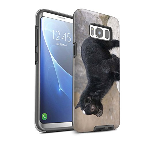 STUFF4 Gloss Tough Shock Proof Phone Case for Samsung Galaxy S8/G950 / Kid/Billy Goat Design/Cute Pet Animals Collection