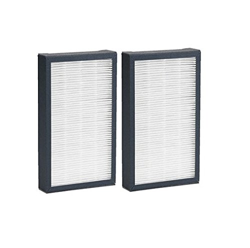 HEPA Replacement Filter E; For Model