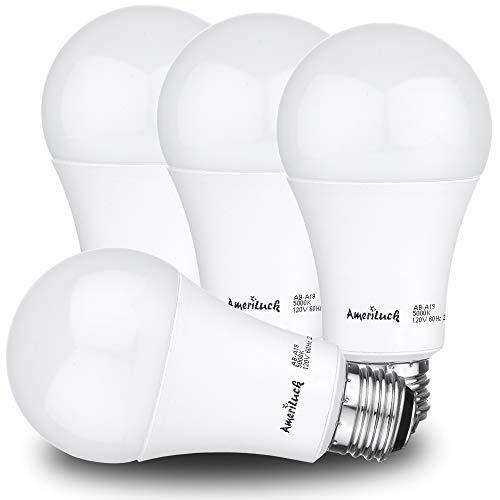 1600 Lumen Led Light Bulb