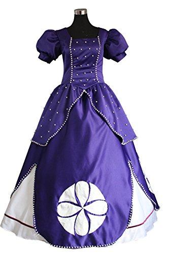 Cosrea Disney Sofia The First Princess Satin Adult Costume Dress (Medium) (Disney Princess Costumes Adults)