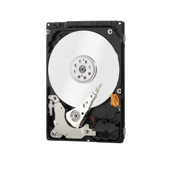WD Black Performance 320 GB 2.5-Inch SATA 6Gb/s 7200 RPM 32MB Cache Mobile Hard Disk Drive (WD3200LPLX) 410XaIqX49L. SS555