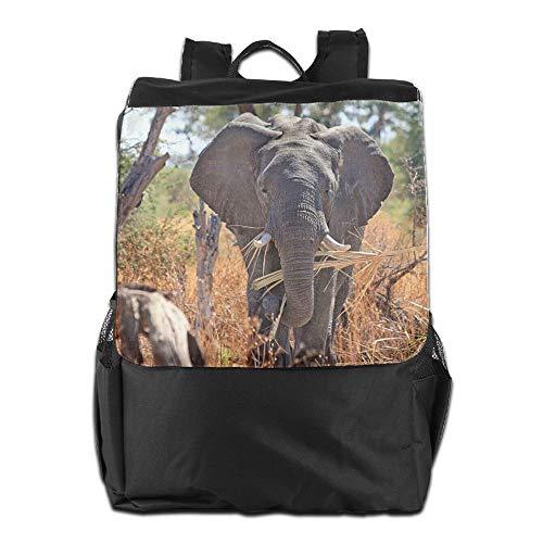 Safari Africa Animal Elephant Unisex Casual Hiking Backpack by HIFUN