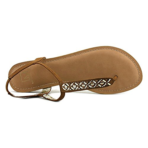 Blue T MG35 Sandals Skyler Thong Flat Powder Chestnut Strap 0pxqREw1x