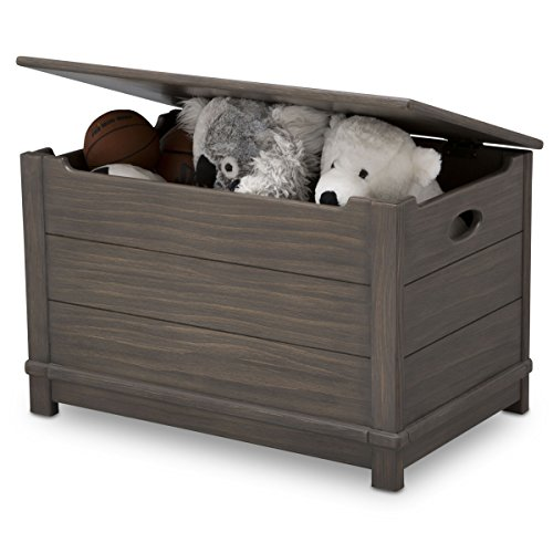 Delta Children Monterey Farmhouse Hope Chest Toy Box, Rustic Grey