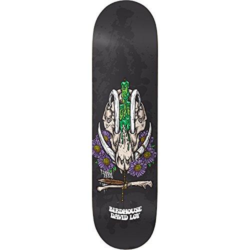 タクシーブランド改善するBirdhouse Skateboards David Loy神社スケートボードデッキ – 8.38