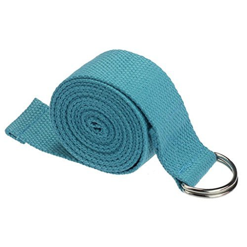 Kingfansion Fashion Yoga Stretch Strap D-Ring Belt Waist Leg Fitness 180CM Adjustable (Blue)