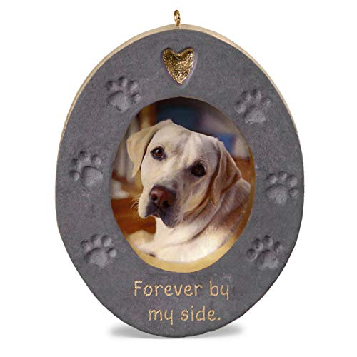 Hallmark Keepsake Christmas Ornament 2019 Forever by My Side Pet Memorial Concrete Photo Frame (Personalized Christmas Frame)