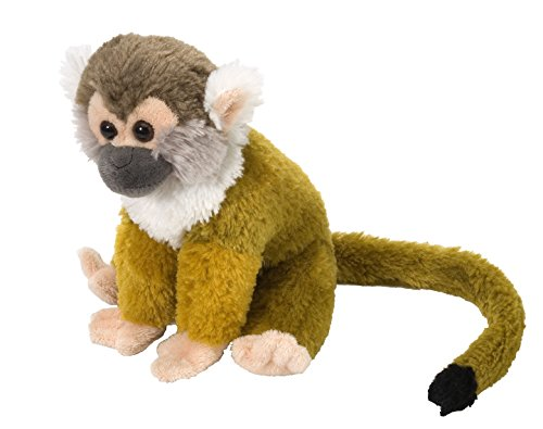 Cute Little Monkey - Wild Republic Squirrel Monkey Plush, Stuffed Animal, Plush Toy, Gifts for Kids, Cuddlekins 8 Inches