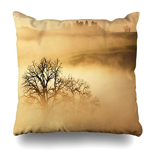 Ahawoso Throw Pillow Covers Holidays Autumn Foggy Sunrise Tuscany Italy Vineyard Tuscan Parks Agriculture Belvedera Calm Cloud Home Decor Zippered Pillowcase Square Size 18 x 18 Inches Cushion Case ()