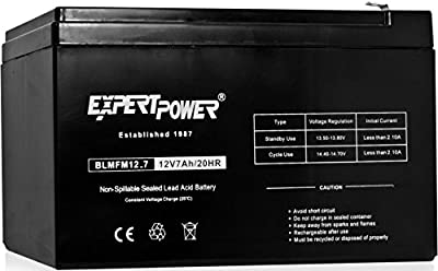 ExpertPower 12 Volt ALARM Batteries by ExpertPower