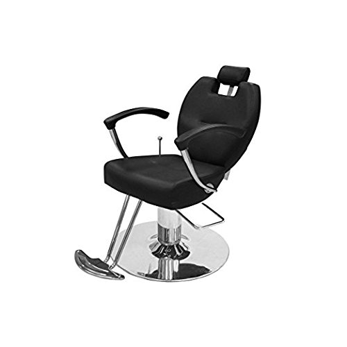 Beauty Salon Styling Chair HERMAN BLACK All Purpose Salon Furniture and Barber Chairs