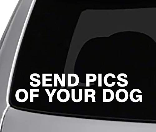 Send PICS of Your Dog Decal CAR Truck Window Sticker Funny Joke Pets Dogs (Pics Dogs Of)