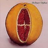 Shelleyan Orphan - Humroot - Rough Trade - R 2791, Rough Trade - R2791