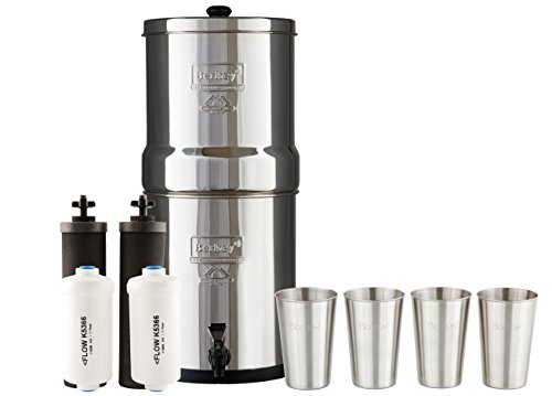 Berkey Light Water Filtration System with Two Black Filter E