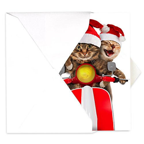 Scooter Cats Holiday Card Pack - Set of 25 cards - 1 design, versed inside with envelopes Photo #2