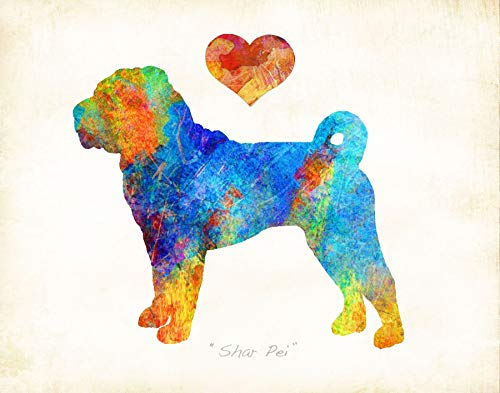 Shar-Pei Dog Breed Watercolor Art Print by Dan Morris