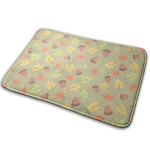 Kui Ju Non-Slip Doormat Entrance Rug Fade Resistant Floor Mats Acorn Picture Shoes Scraper 23.6x15.7x0.39Inch ()