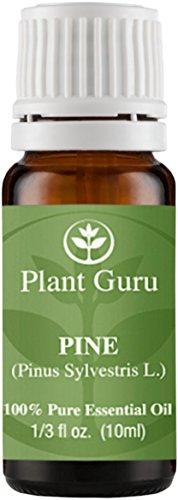 Pine Essential Oil. (Pinus Sylvestris L.) 10 ml. 100% Pure, Undiluted, Therapeutic Grade.