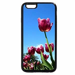 iPhone 6S Plus Case, iPhone 6 Plus Case, pink tulips hdr