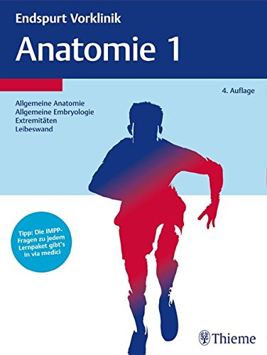 Endspurt Vorklinik: Anatomie 1: Die Skripten fürs Physikum