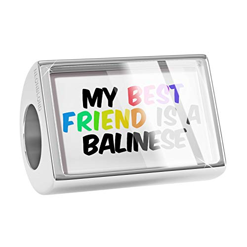 NEONBLOND Charm My Best Friend a Balinese Cat from United States Bead
