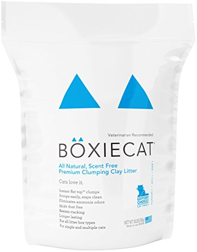 Boxiecat Premium Clumping Clay Cat Litter, 16-pounds (Litter Cat Track Clumping Low)
