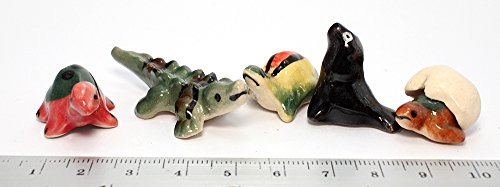 Crocodile Turtle Animals Ceramic Mini Animals Dollhouse Miniatures Figurine set 5 pcs. (Mini Pirate Skull Figurine)