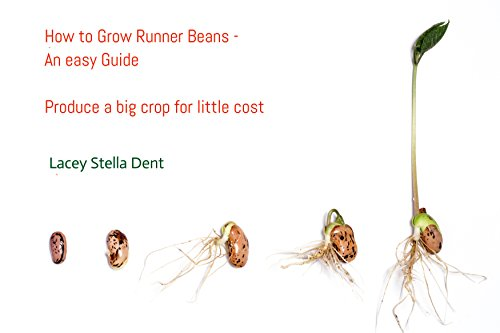 How to grow Runner Beans - an easy guide: Produce a big crop for little cost by [Dent, Lacey Stella]