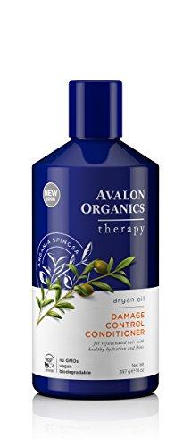 Avalon Organics Argan Oil Damage Control Conditioner, 14 (Avalon Essential Oils Shampoo)