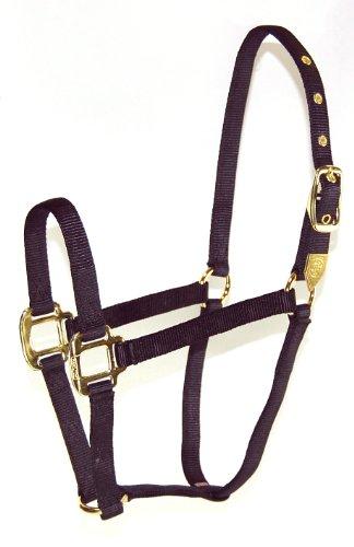 Hamilton 8D AVBK 3/4-Inch Nylon Arabian Horse Halter for 800 to 1100-Pound Horse, Black ()