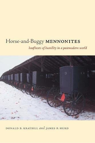 Horse And Buggy - 5